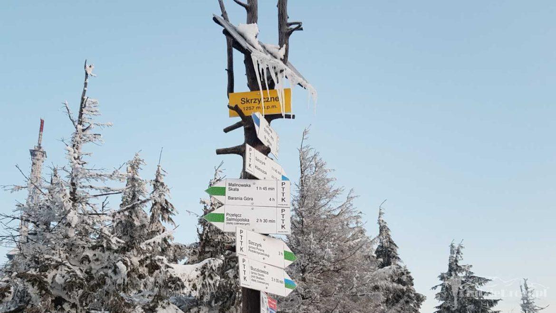 Szczyt Skrzycznego 1257 m - najwyższy szczyt Beskidu Śląskiego